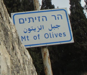Mt. of olives sign