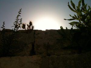 israel 13 418